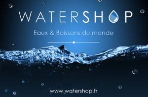 VISUEL ARTICLE WATERSHOP